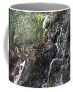 Coki Waterfall Coffee Mug