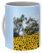 Colby Farms Sunflower Field Newbury Ma Standing Tall Coffee Mug