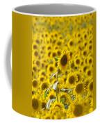 Colby Farms Sunflower Field Newbury Ma Coffee Mug