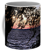 Cold Florida Sunset Coffee Mug