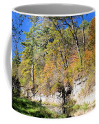 Coldwater Trout Stream Coffee Mug