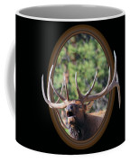 Colorado Bull Elk Coffee Mug by Shane Bechler