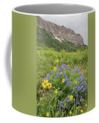 Colorado Color #4 Coffee Mug
