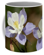 Colorado Columbine #1 Coffee Mug