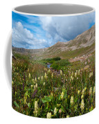 Colorado Late Summer Splendor Coffee Mug