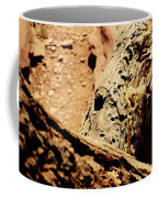 Colorado National Mounument Coffee Mug