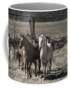 Colorado Run Coffee Mug