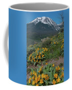 Colorado Spring Wildflower And Mountain Portrait Coffee Mug by Cascade Colors