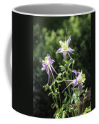 Colorado State Flower Coffee Mug