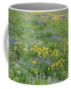 Colorado Summer Color Coffee Mug