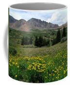 Colorado Wildflower Spectrum Coffee Mug