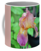 Colored Iris  Coffee Mug