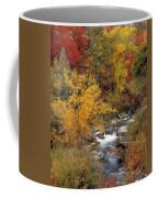 Colorful Canyon Coffee Mug