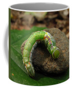 Colorful Caterpillar  Coffee Mug