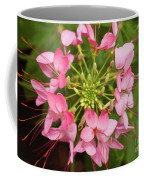Colorful Cleome Coffee Mug