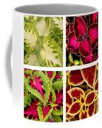 Colorful Coleus Coffee Mug