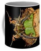 Colorful Cryptic Moth Coffee Mug