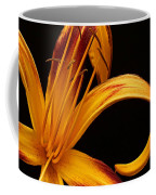 Colorful Curls Coffee Mug