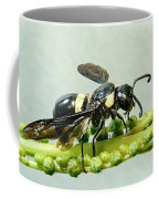 Colorful Hymenop 2 Coffee Mug