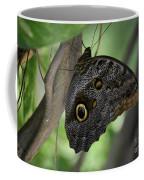 Colorful Markings On A Blue Morpho Butterfly On A Tree Trunk Coffee Mug