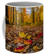Colorful Path Coffee Mug