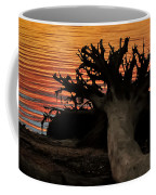 Colorful Roots Coffee Mug