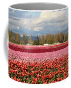 Colorful Skagit Valley Tulip Fields Panorama Coffee Mug