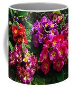 Colorful Spring Primrose By Kaye Menner Coffee Mug