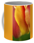 Colorful Tulip Closeup Abstract Coffee Mug