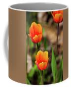 Colorful Tulips Coffee Mug