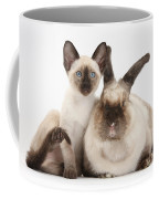 Colorpoint Rabbit And Siamese Kitten Coffee Mug