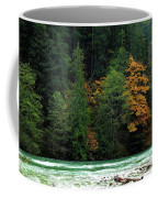 Colors In Nature Coffee Mug