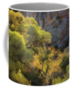 Colors Of Autumn In The Sonoran  Coffee Mug