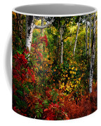 Colors On Mcclure Pass Coffee Mug