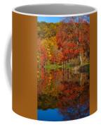 Colors Reflect Coffee Mug
