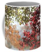 Colour Coffee Mug