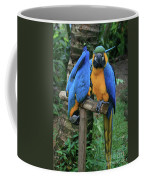 Colourful Macaw Pohakumoa Maui Hawaii Coffee Mug