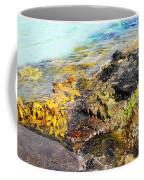 Colourful Sea Life - Fishers Point Coffee Mug