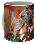 Colours Of Fall I Coffee Mug