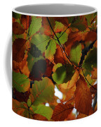 Colours Of Fall II Coffee Mug
