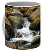 Columbia Gorge 2 Coffee Mug