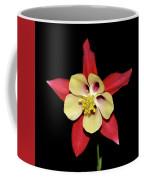 Columbine - Aquilegia - Mckana's Giant 002 Coffee Mug