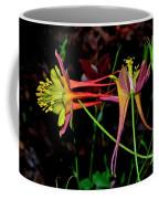Columbine - Aquilegia - Mckana's Giant 003 Coffee Mug