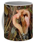 Columned Stinkhorn Mushroom - Outer Banks Nc Coffee Mug