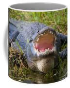 Come A Bit Closer Coffee Mug
