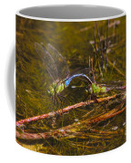 Come Along With Me Dragonflies Coffee Mug
