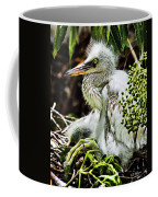 Come On Feathers Coffee Mug