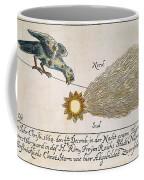 Comet, 1664 Coffee Mug
