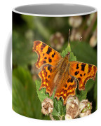 Comma Butterfly Coffee Mug