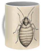 Common Bedbug, Cimex Lectularius Coffee Mug